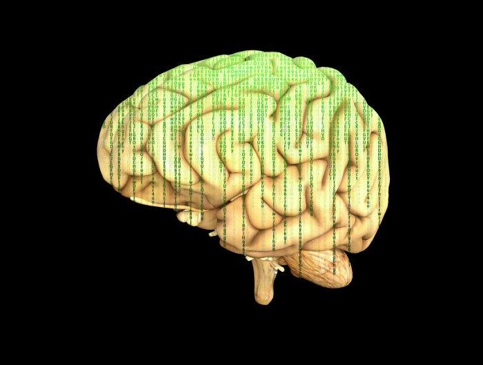 brain with matrix code